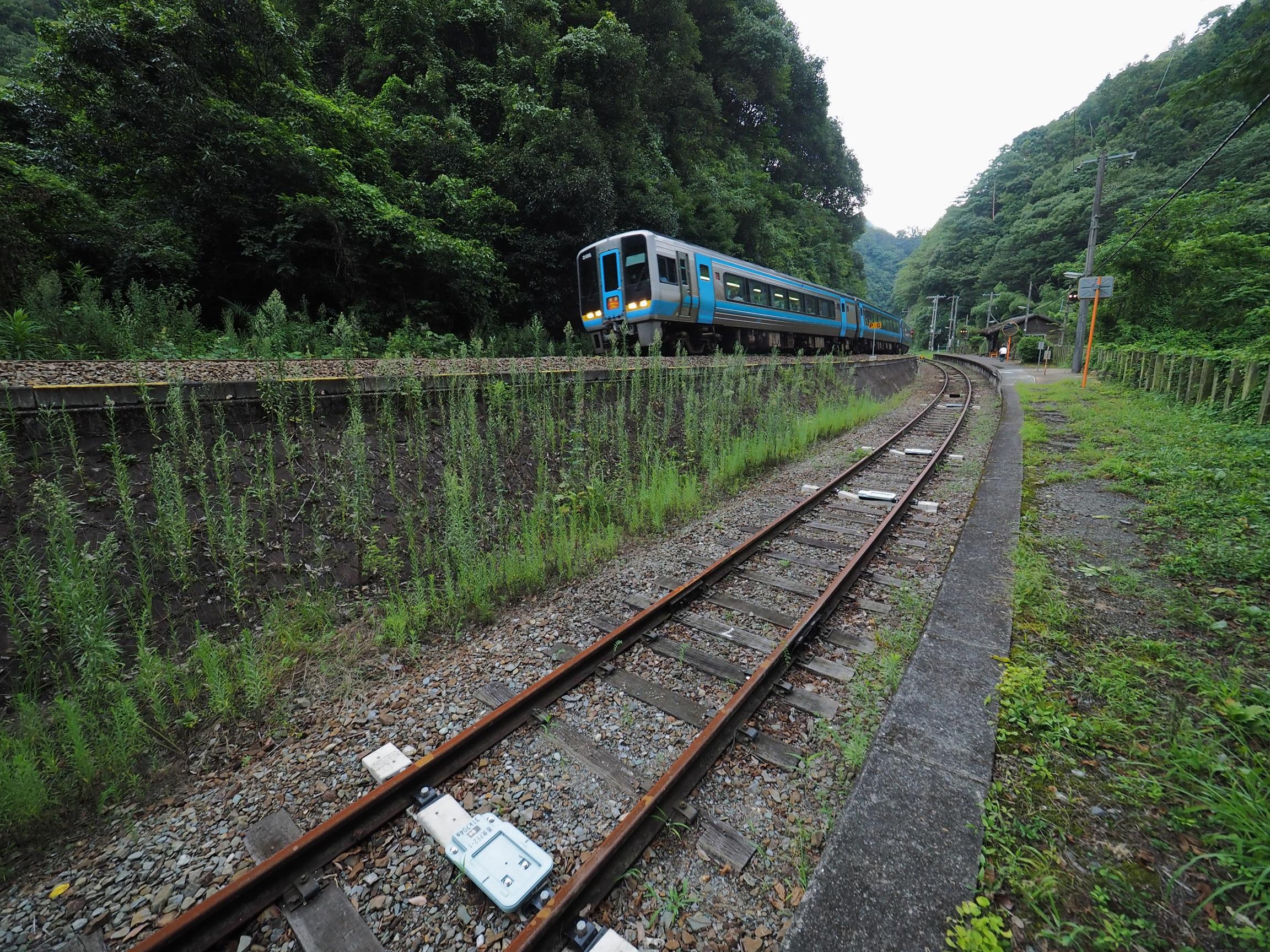 坪尻駅を通過する特急南風3